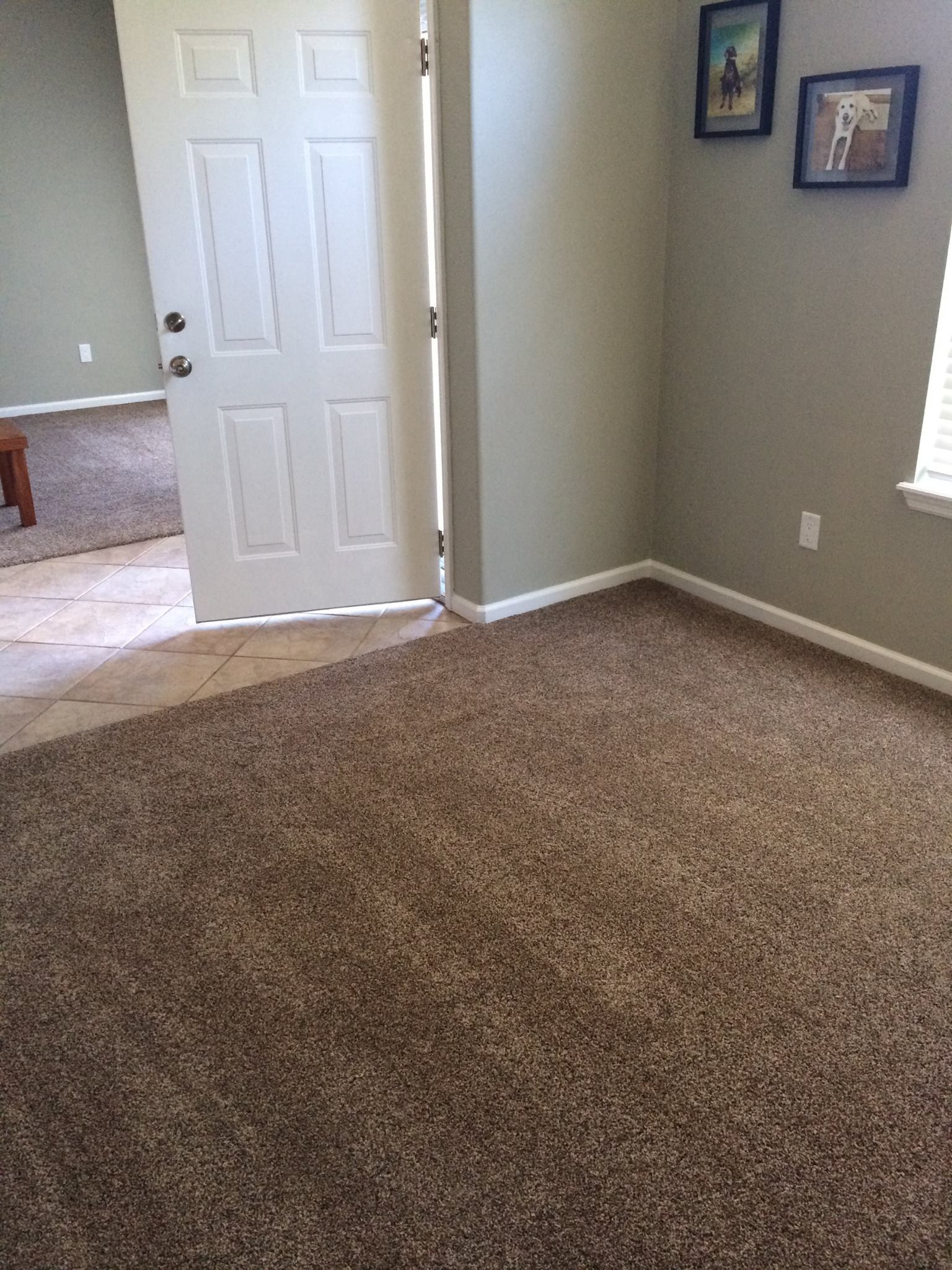 Carpet Welcome To Colin Charvis Flooring
